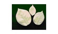 Набор вайнеров (молды) листья Розы